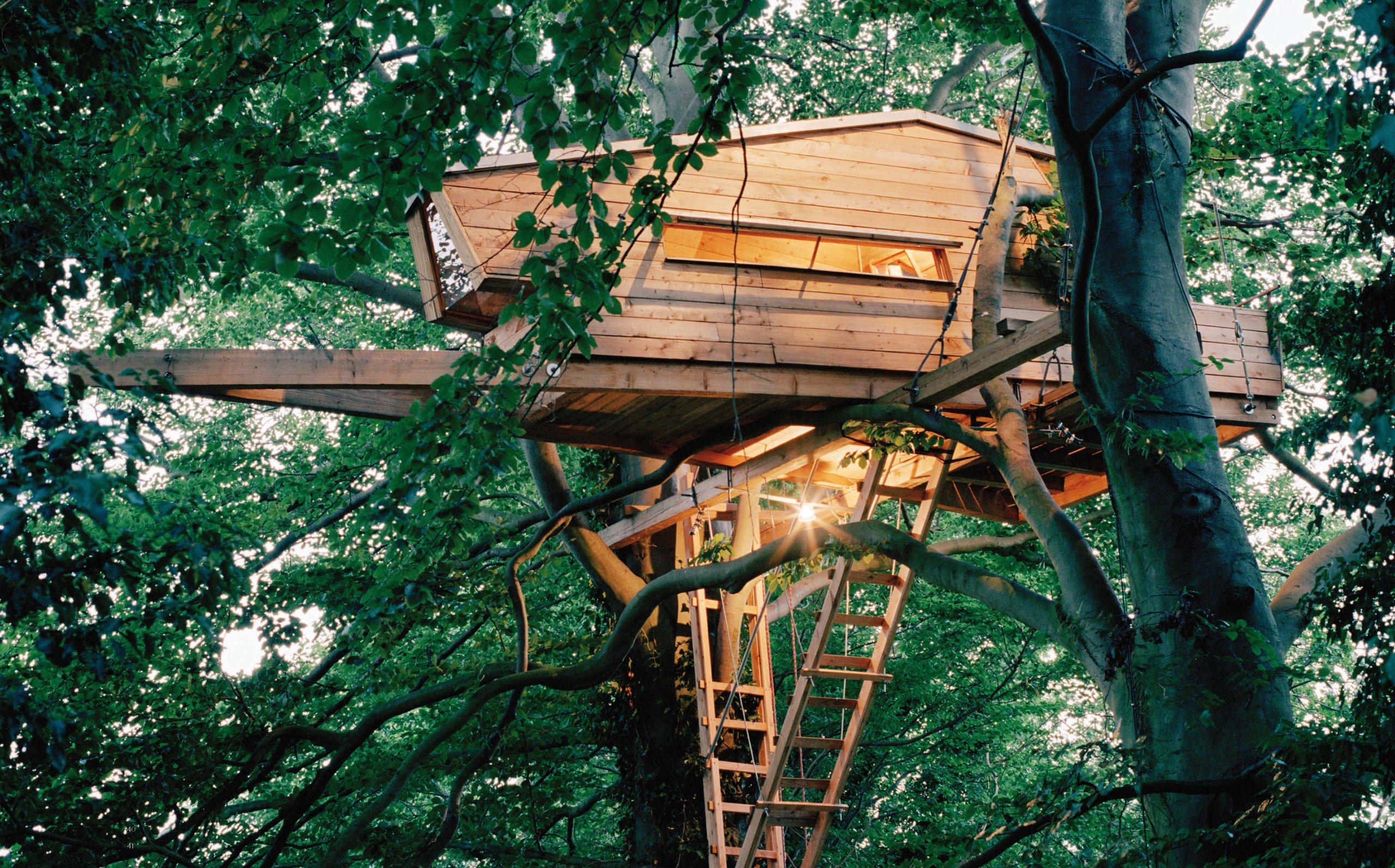 Baumhaus Architekturbüro baumhäuser neue architektur in den bäumen amazon de andreas