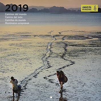 Amazon.com : Grupo Erik editores cp19069 - Calendar 2019 ...