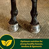 Farnam Horseshoer's Secret Pelleted Hoof Supplement for Horses