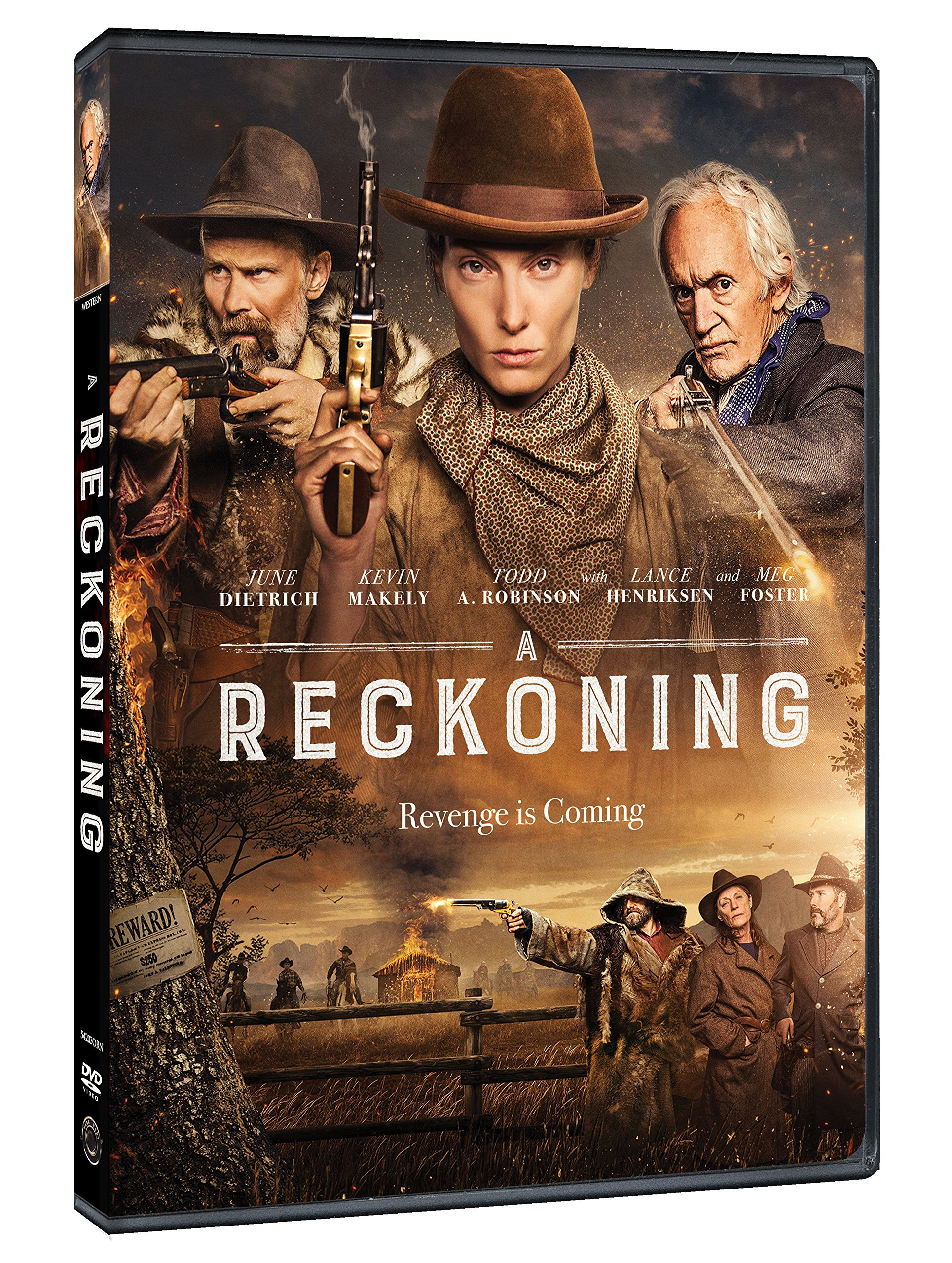 DVD : A Reckoning (Widescreen, Dolby, AC-3, Subtitled, Dubbed)
