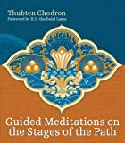 how to meditate a practical guide by kathleen mcdonald pdf
