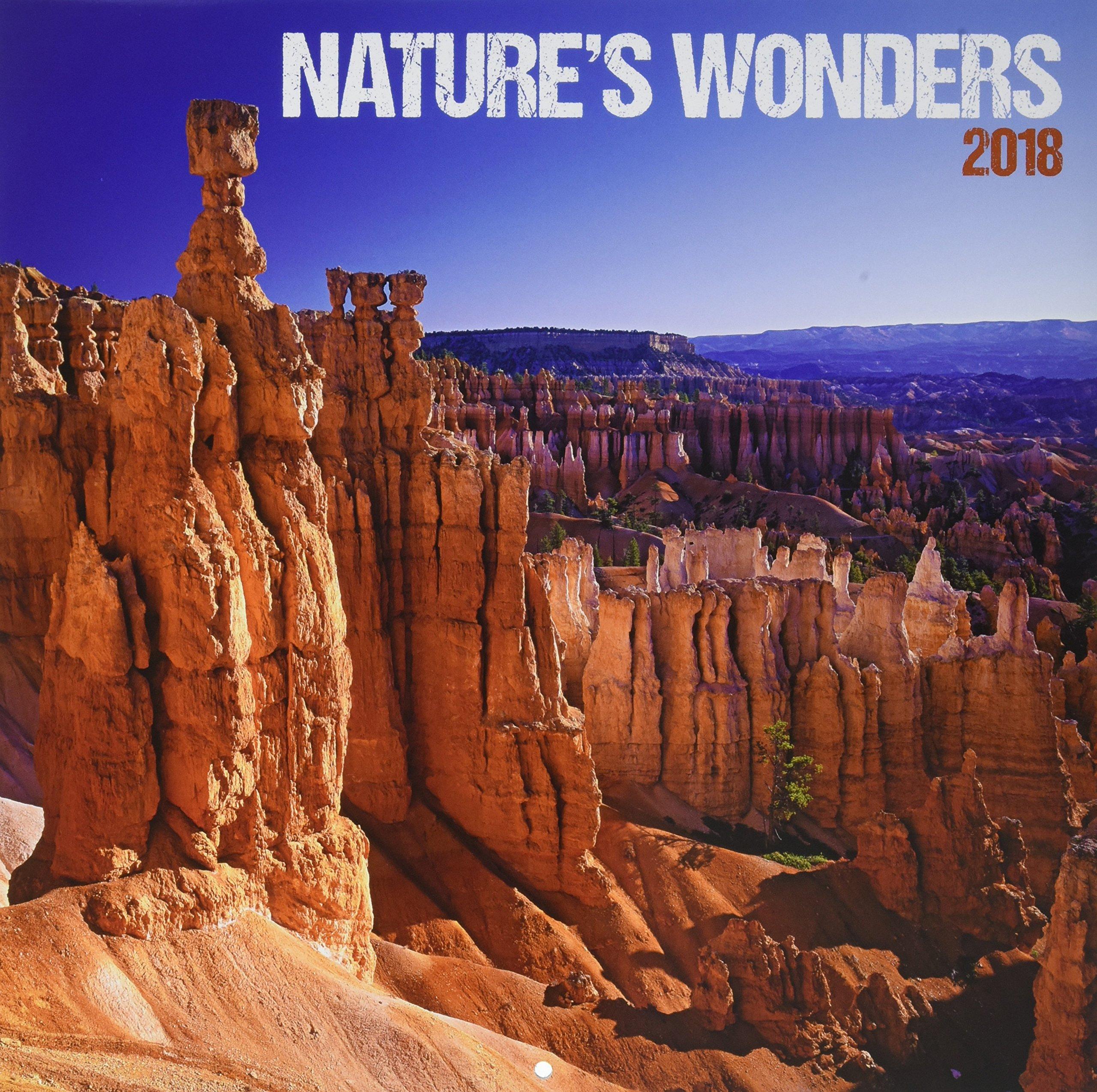 Download Nature's Wonders 2018 Calendar ebook