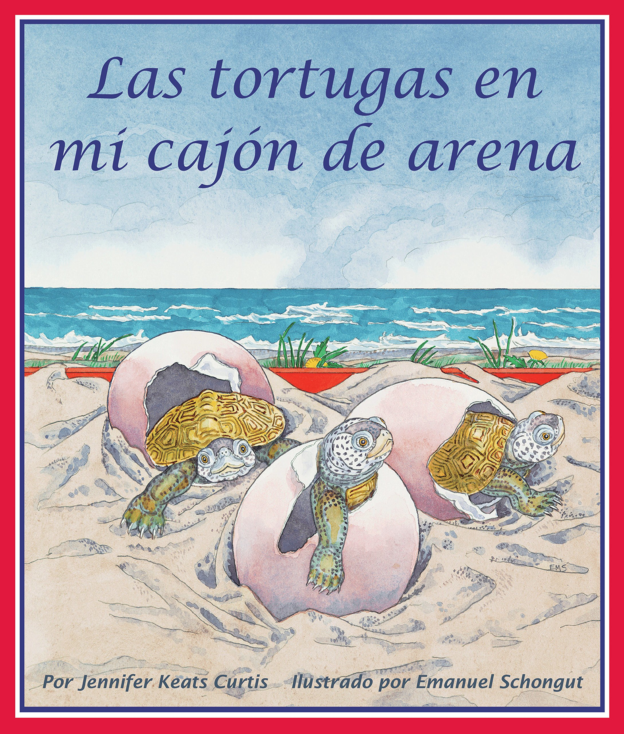Las tortugas en mi cajón de arena [Turtles In My Sandbox] (Spanish Edition)
