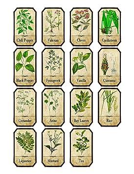 Favorit Lot de 15 Style vintage d'apothicaire à épices herbes étiquettes  OP38