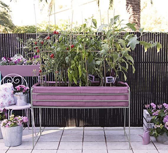 Huerto urbano Veggie Bag 126x54x80 cm.Color lila: Amazon.es: Jardín