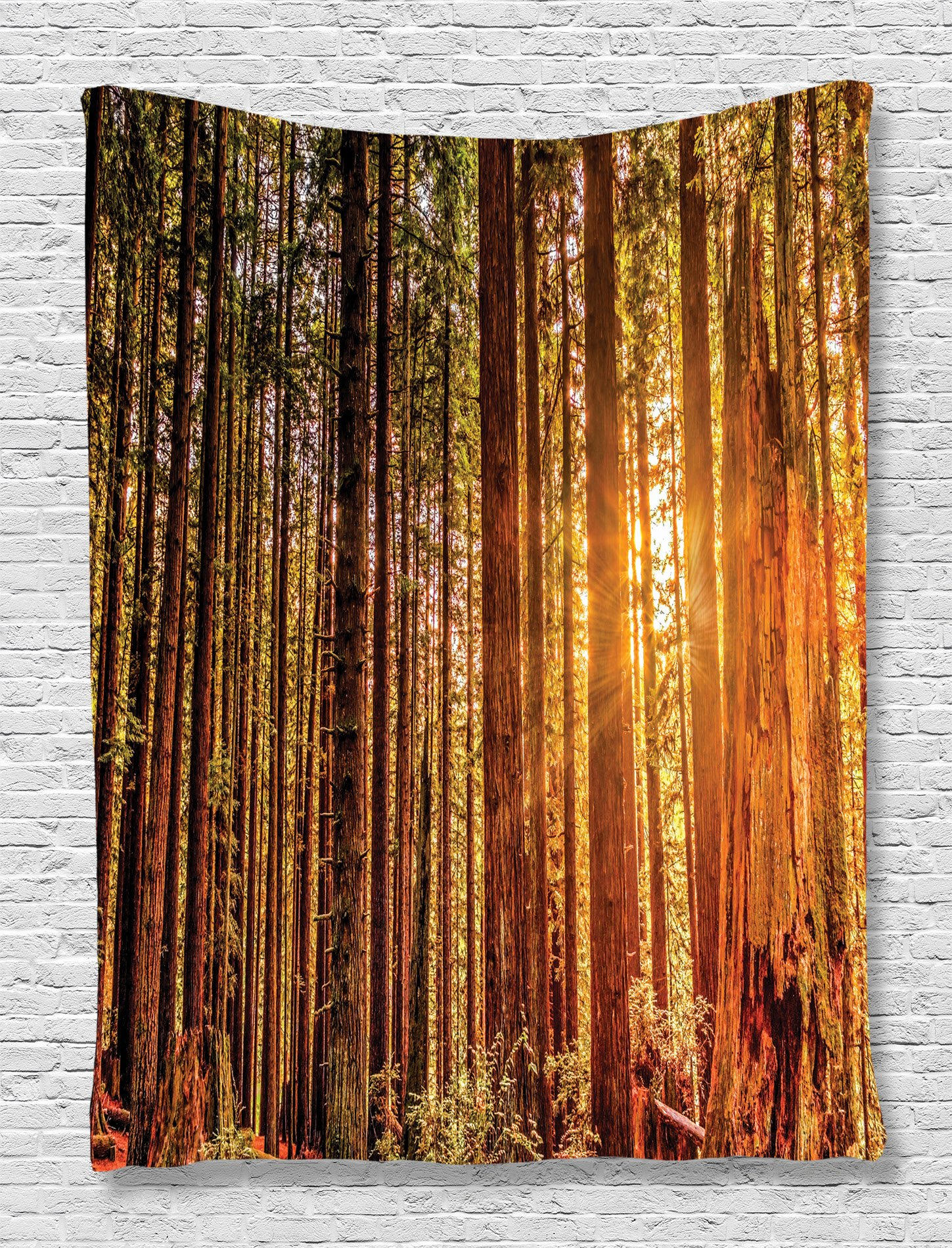 Ambesonne USA National Park Tapestry Wall Hanging, Tall Trees Red Woods Forestry, Bedroom Living Room Dorm Decor, 60 W x 80 L inches