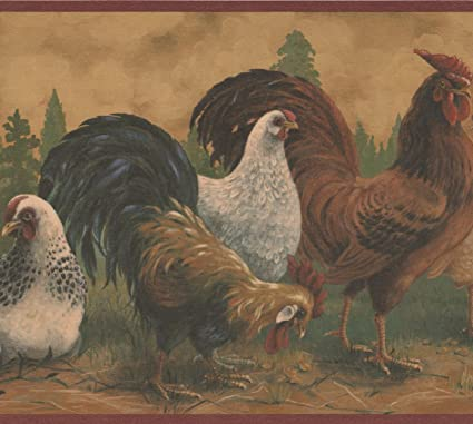 Brown Rooster White Hen Farmhouse Wallpaper Border Retro Design Roll 15 X 105