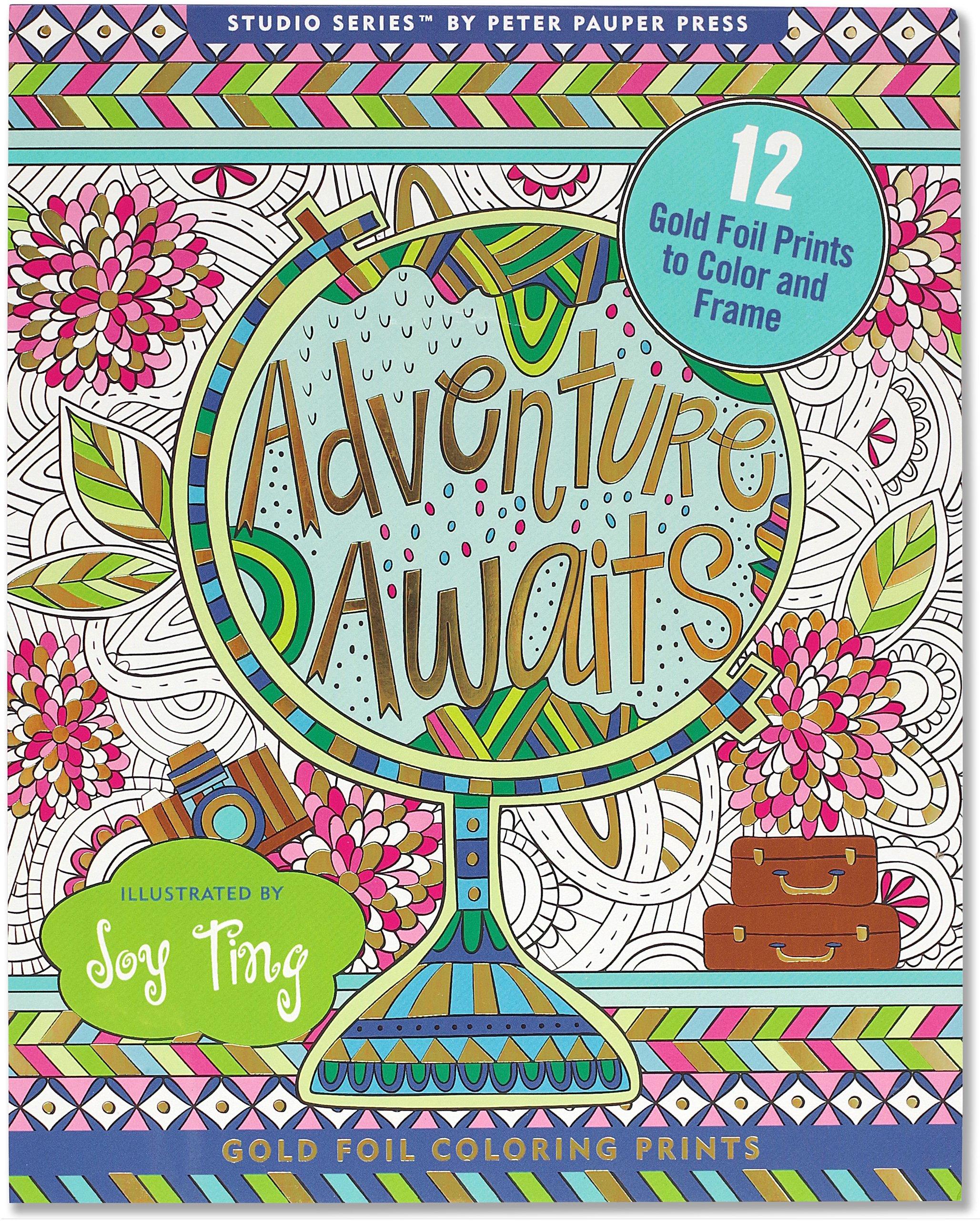 Amazon.com: Adventure Awaits! Foiled Coloring Prints (12 frame ...