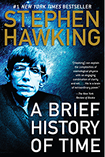 Hawking My Brief History Review Essay - image 3