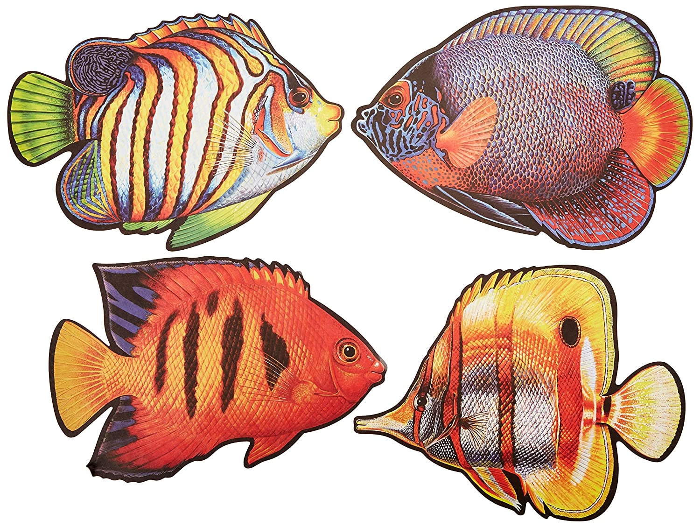 Amazon.com: Coral Reef Fish Cutouts (4/Pkg): Kitchen & Dining