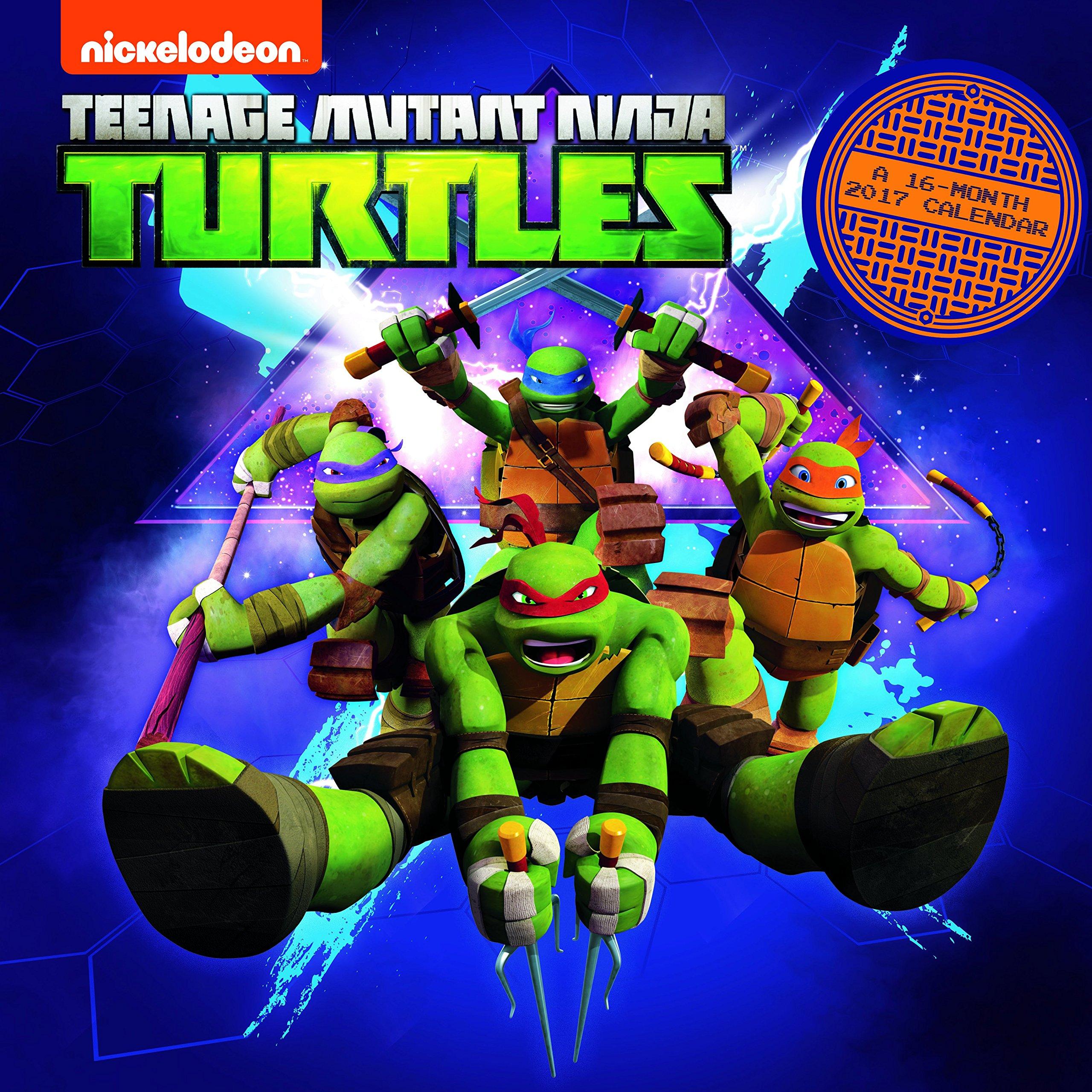 Teenage Mutant Ninja Turtles 2017 Calendar: Amazon.es ...