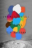 Infinite Detail: A Novel