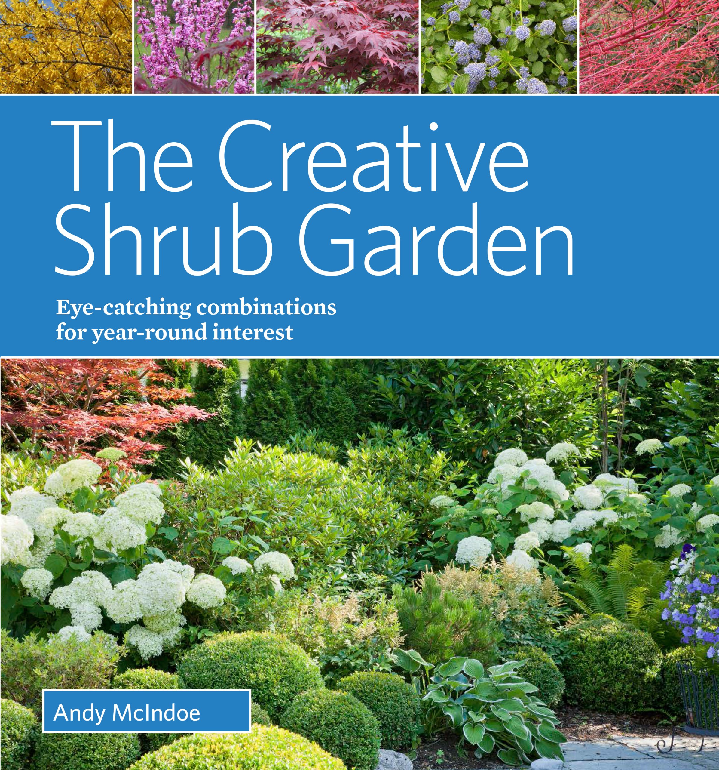 The Creative Shrub Garden Eye Catching Combinations That Make