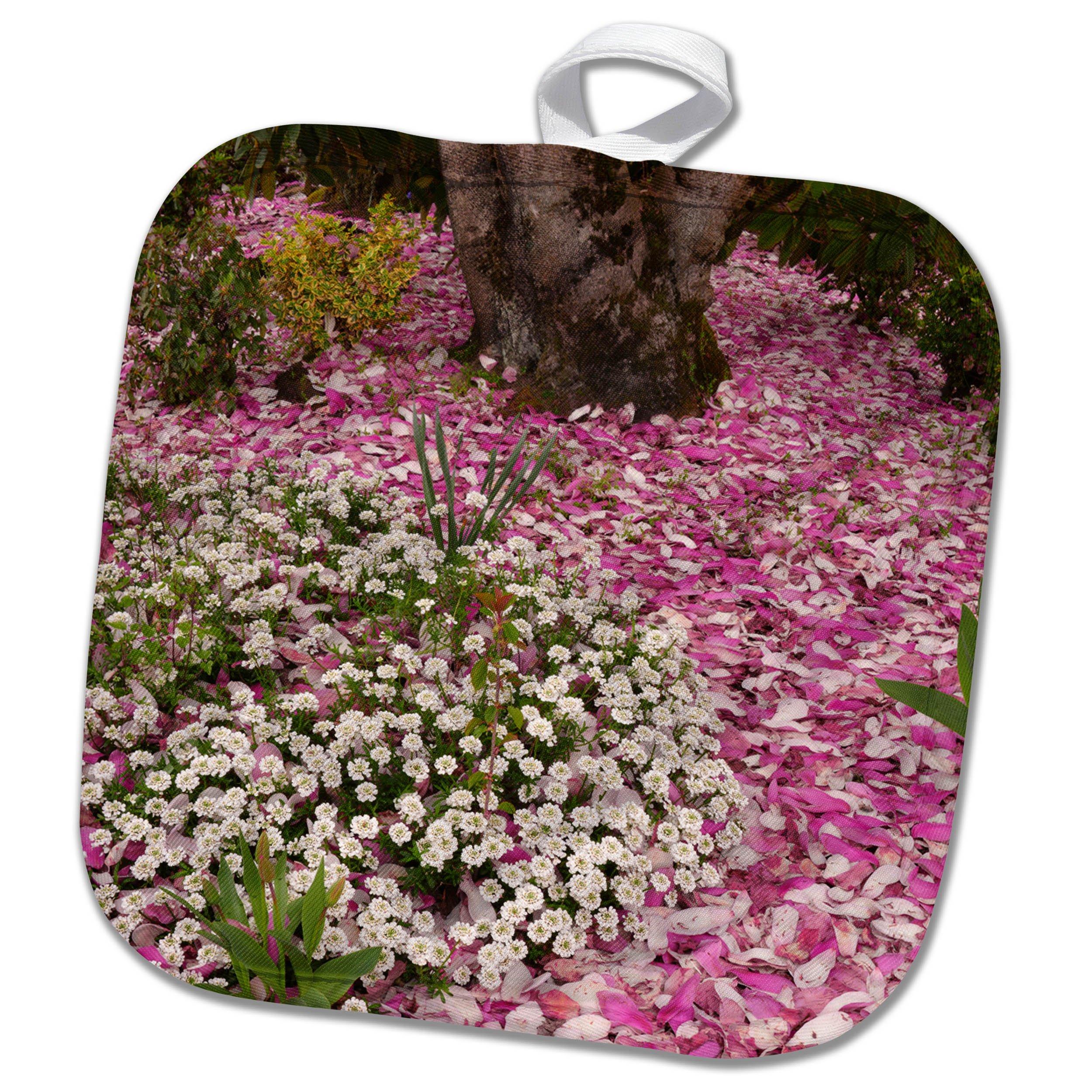 3dRose Danita Delimont - Flowers - USA, Oregon, Portland. Alyssum flowers and magnolia petals. - 8x8 Potholder (phl_279320_1)