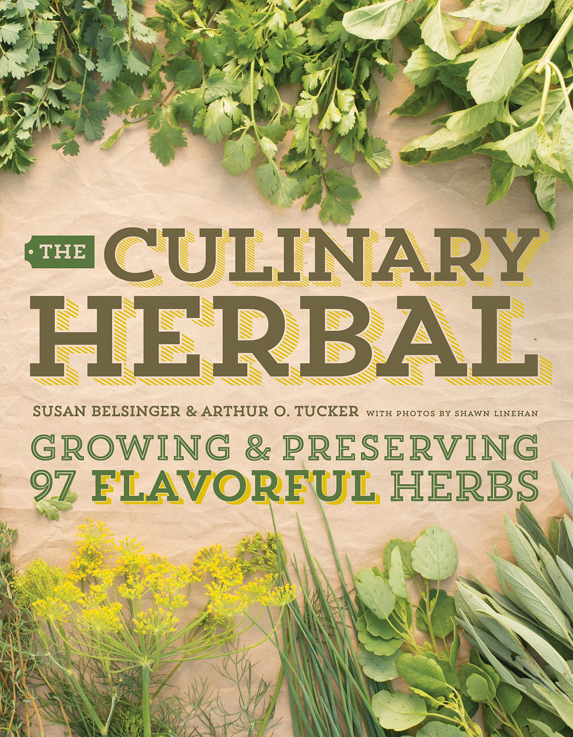 Download The Culinary Herbal: Growing and Preserving 97 Flavorful Herbs pdf epub