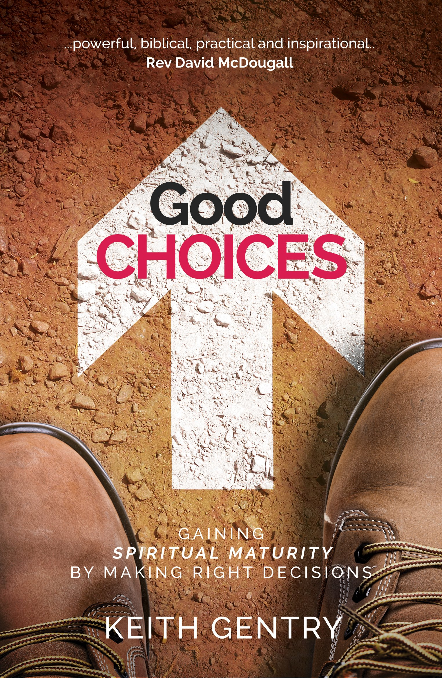 Read Online Good Choices: Gaining Spiritual Maturity by Making Right Decisions pdf