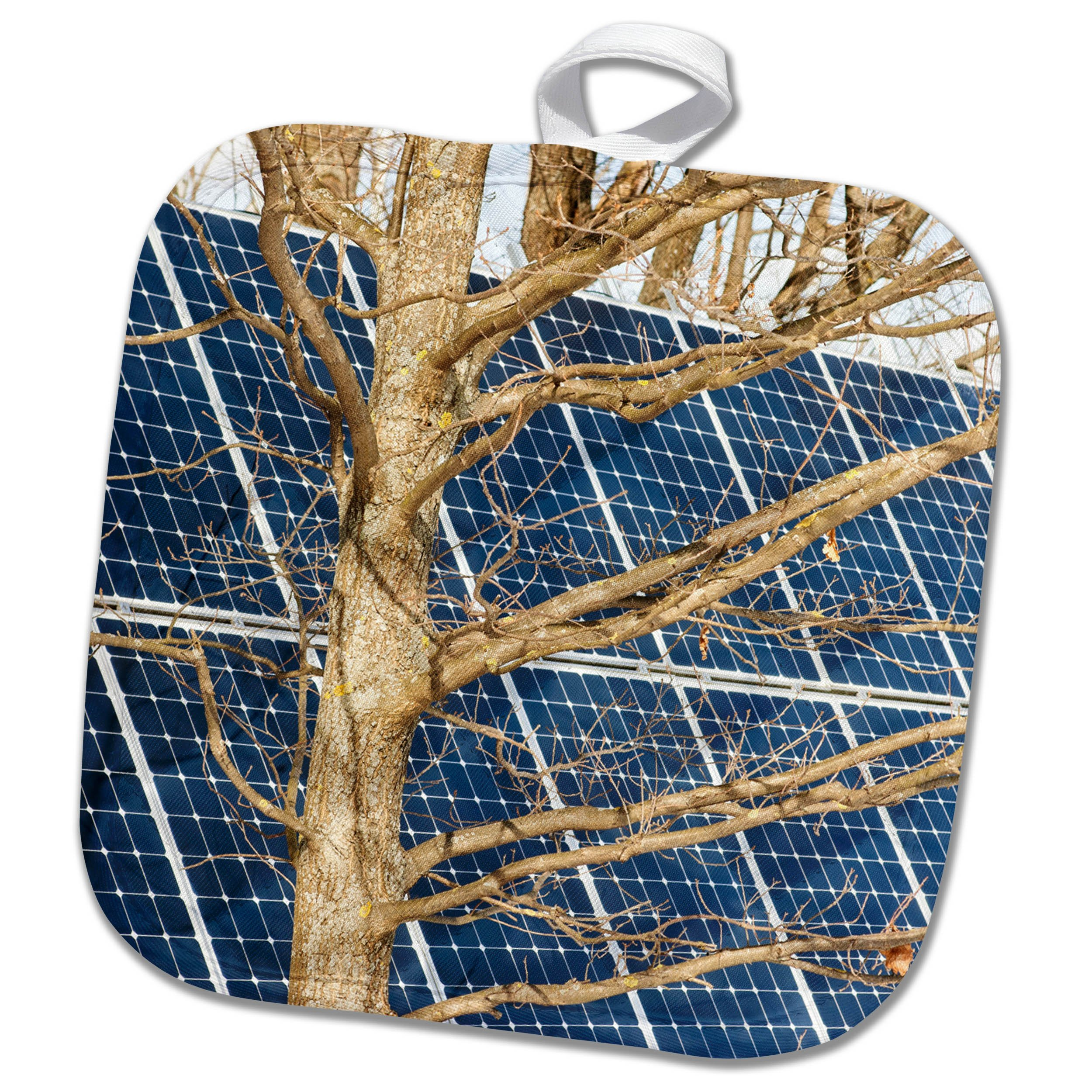 3dRose Alexis Photography - Objects - Young leafless oak tree and a solar power panel. Both turned sunward - 8x8 Potholder (phl_283847_1)