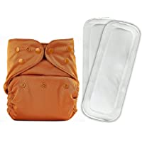 Bumberry Reusable Diaper Cover and 2 Wet Free Inserts (3-36 Months) (Chocolate Brown)