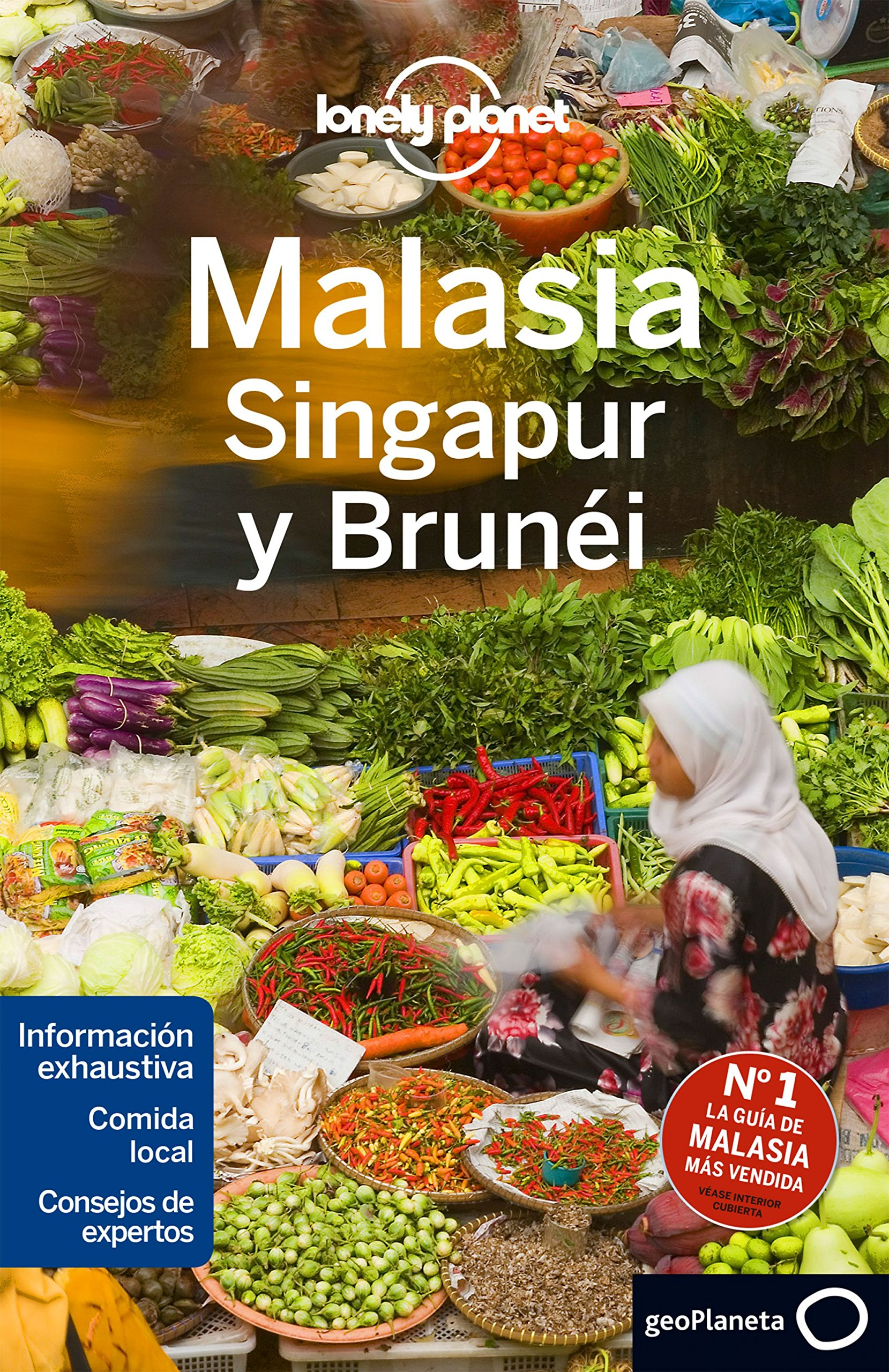 Download Lonely Planet Malasia Singapur y Brunei (Travel Guide) (Spanish Edition) pdf