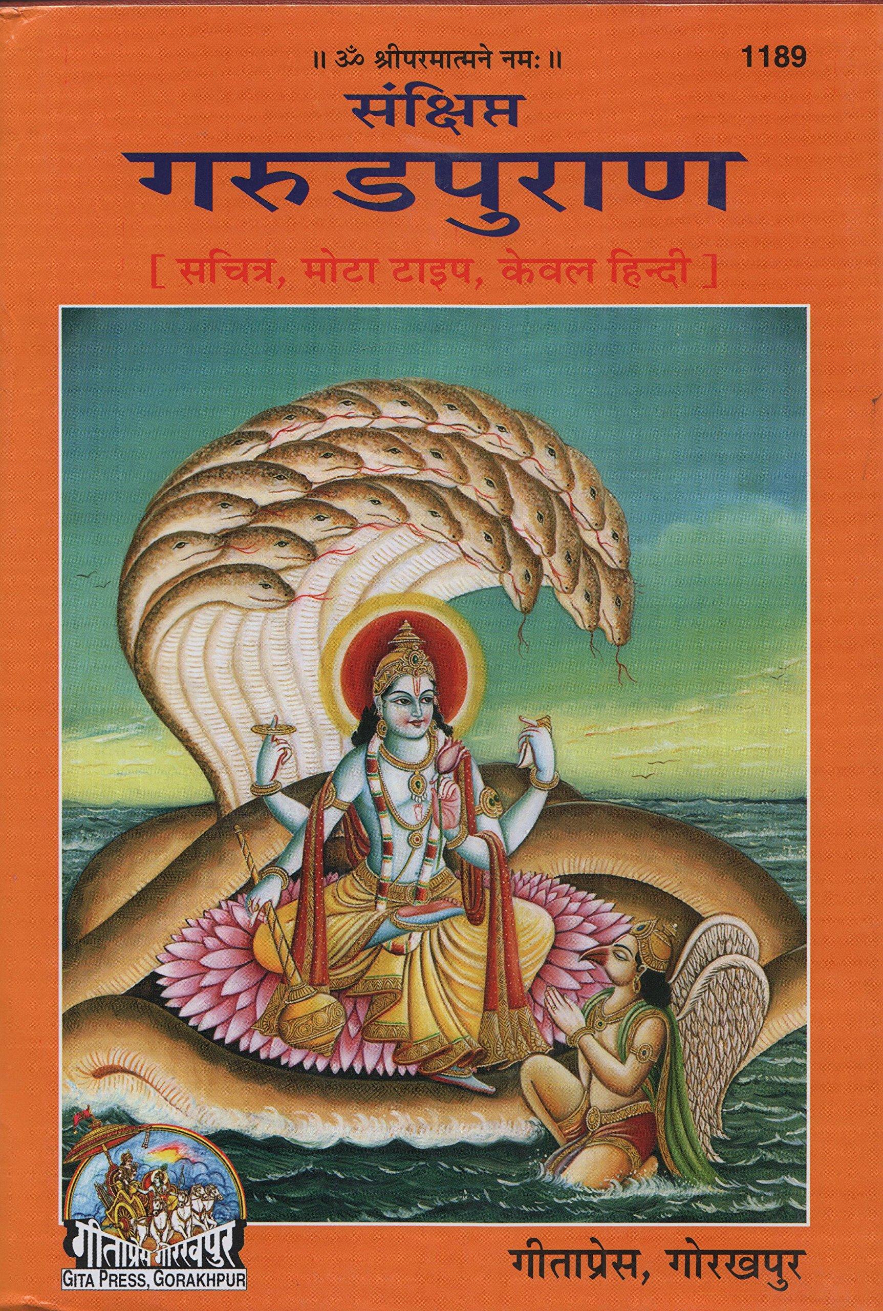 Amazon buy shri vishnu puran code 48 book online at low prices samkshipt garud puran code 1189 fandeluxe Gallery