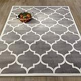 """Ottomanson Paterson Collection Grey Contemporary Moroccan Trellis Design Lattice Area Rug, 7'10"""" X 9'10"""""""