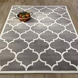 """Amazon Price History for:Ottomanson Paterson Collection Contemporary Moroccan Trellis Design Lattice Area Rug, 94"""" W, Grey"""