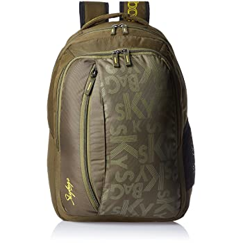 Skybags Router 26 Ltrs Green Casual Backpack