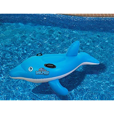 Swimline Dolphin Stable Pool Float: Sports & Outdoors