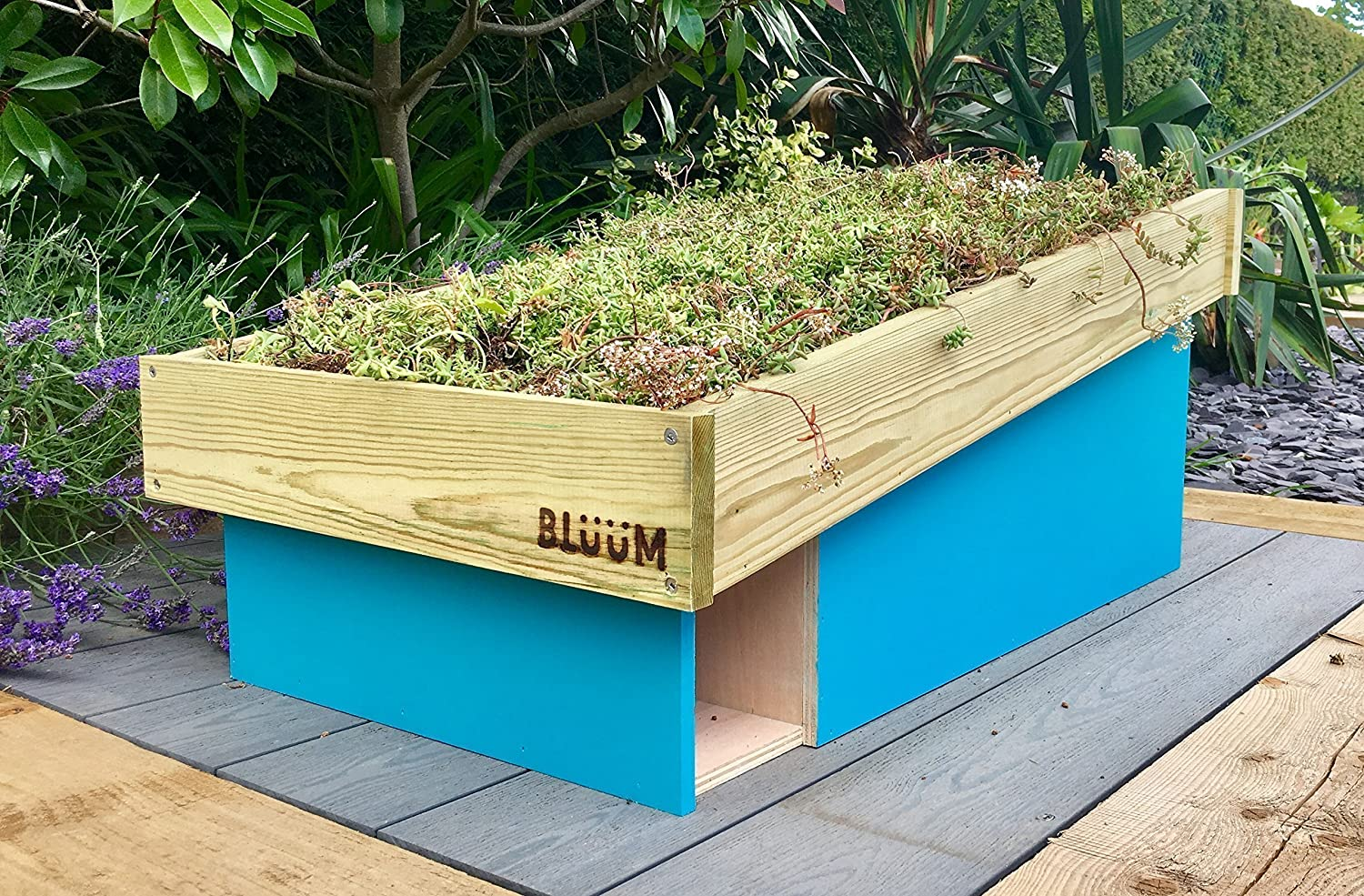 Hedgehog House with Green Roof Planter