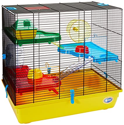 Buy Duvo Duvo 493 312a Fun Hamster Cage With Accessories Large Online At Low Prices In India Amazon In