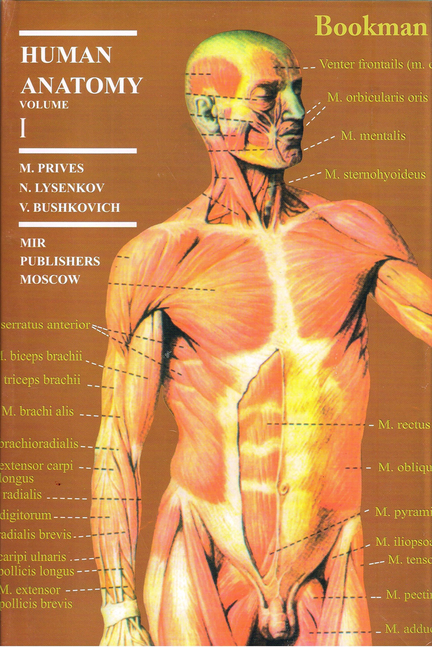 buy human anatomy 2 volume set book online at low prices in india