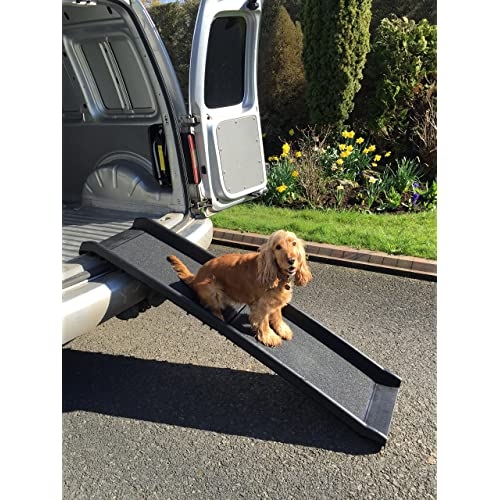 Beyondfashion Folding Dog Ramp Pet Mobility Steps Stairs Portable Ladder Pup Travel