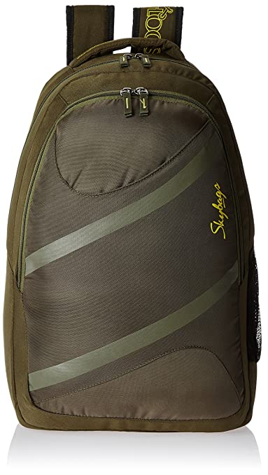 Skybags Router 26 Ltrs Green Casual Backpack  LPBPROU2GRN  Casual Backpacks