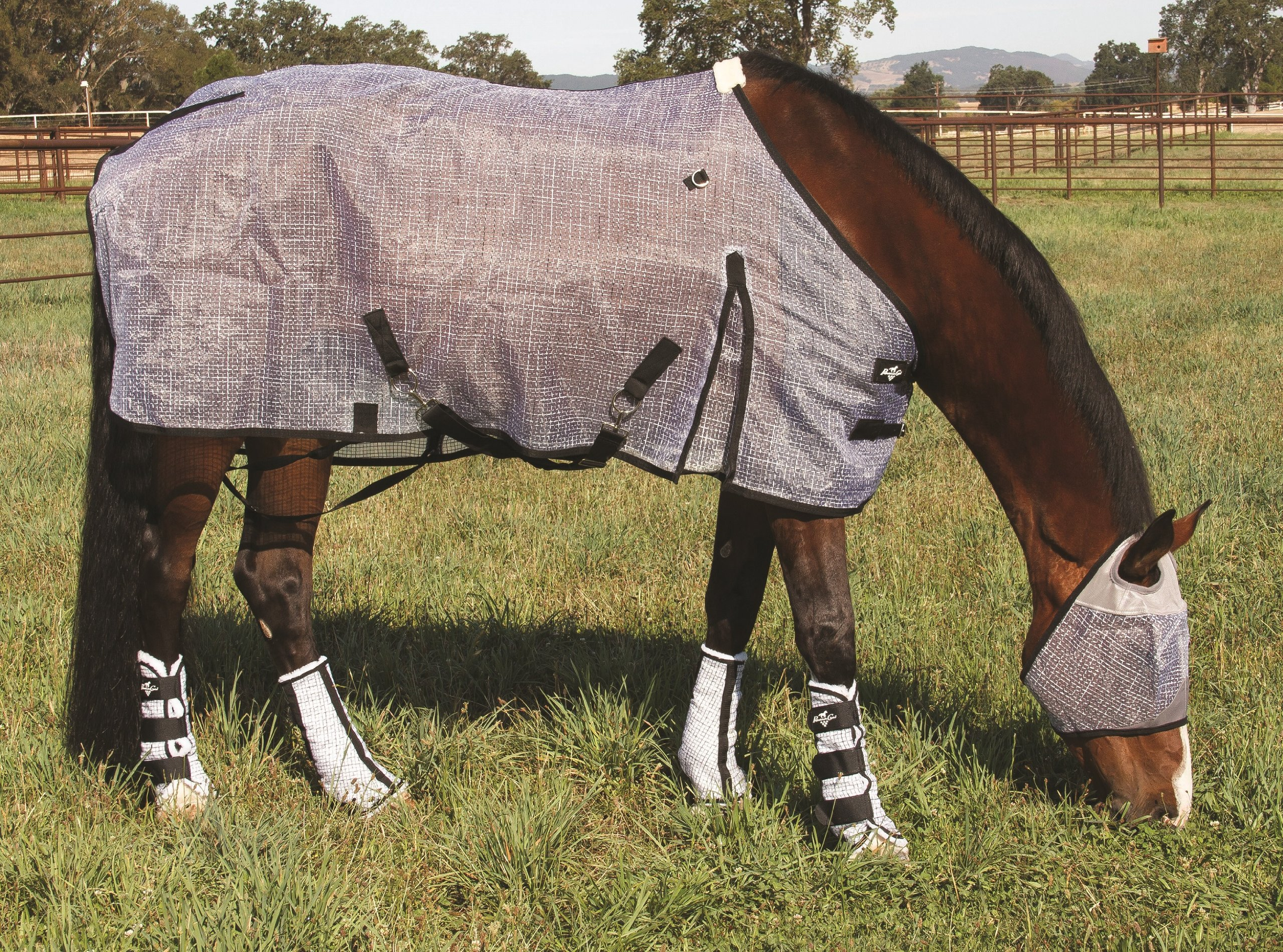 HORSE FLY SHEET BREATHABLE UV PROTECTIVE PROFESSIONAL'S CHOICE (74 INCH)