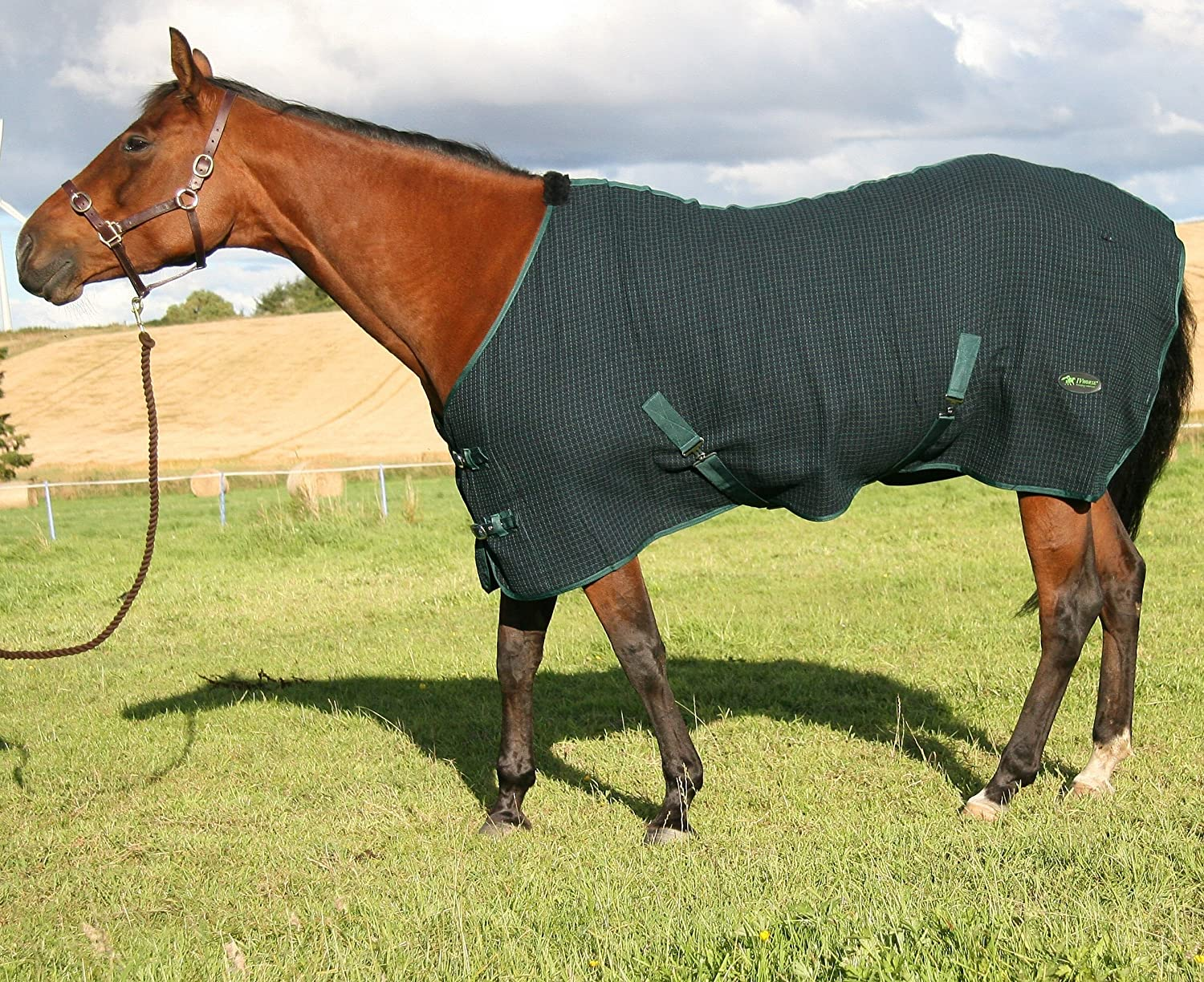 Honeycomb Cooler Horse Rug Waffle Weave Fabric Honey Comb 50 to 70 50, Navy//Green