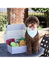 The Dapper Dog Box - Curated Fun Themed Dog Toys, Treats and Accessories Subscription: Small-Medium Dog (0-35 LBS)