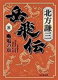 岳飛伝 三 嘶鳴の章 (集英社文庫)
