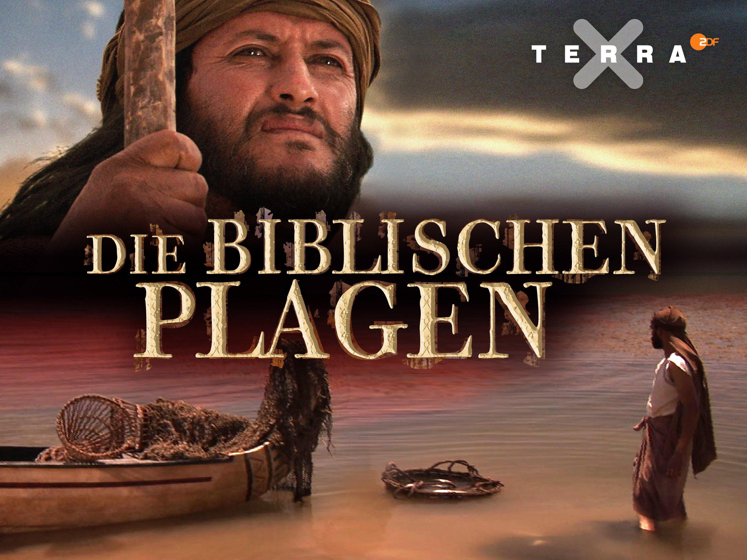 biblische plagen 2020
