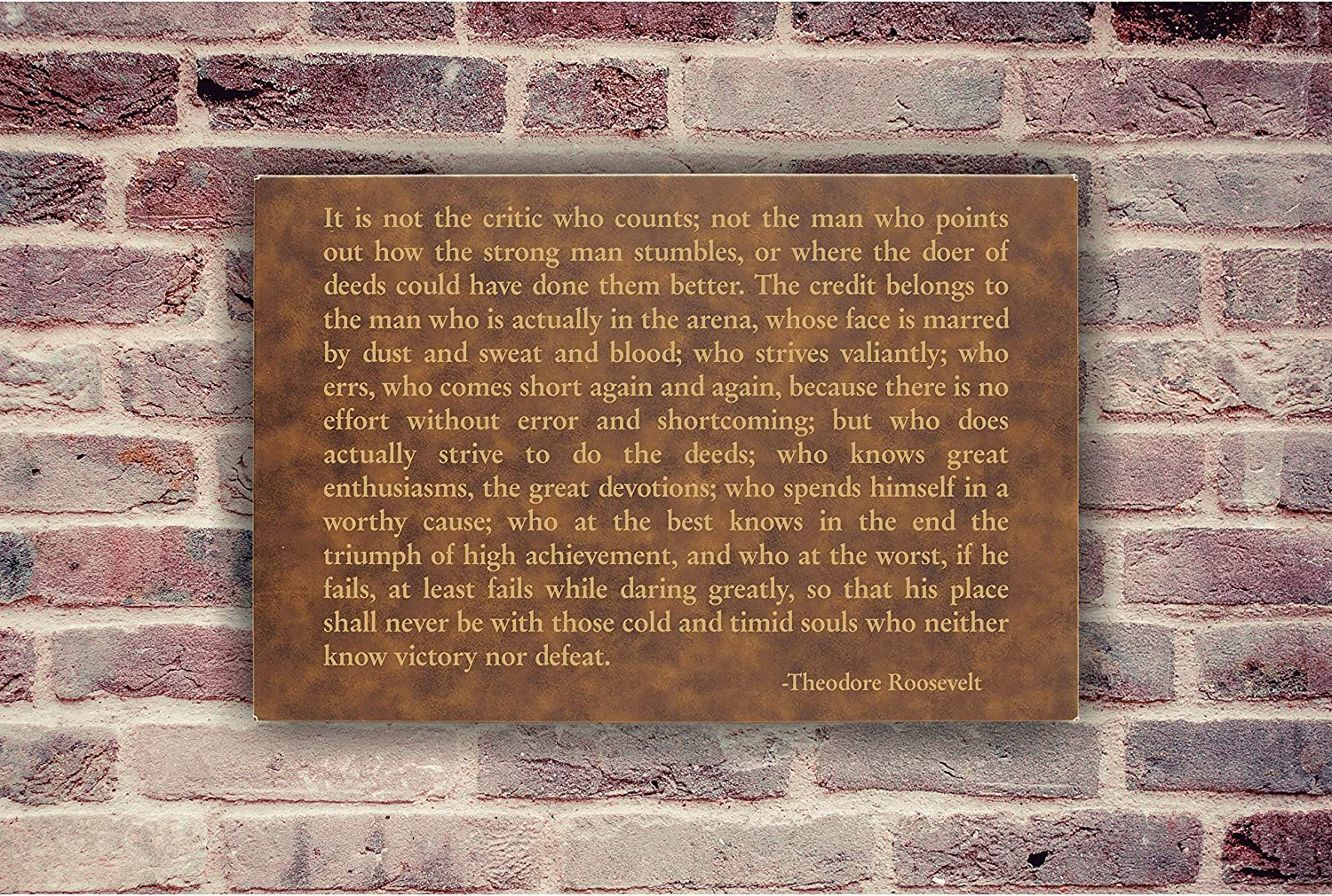 Lazer Designs Theodore Roosevelt Man in The Arena Wall Art Plaque Inspirational Quote Black /& Gold