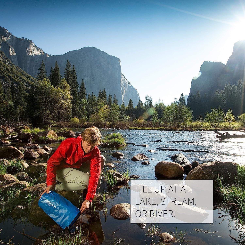 LifeStraw Purification System