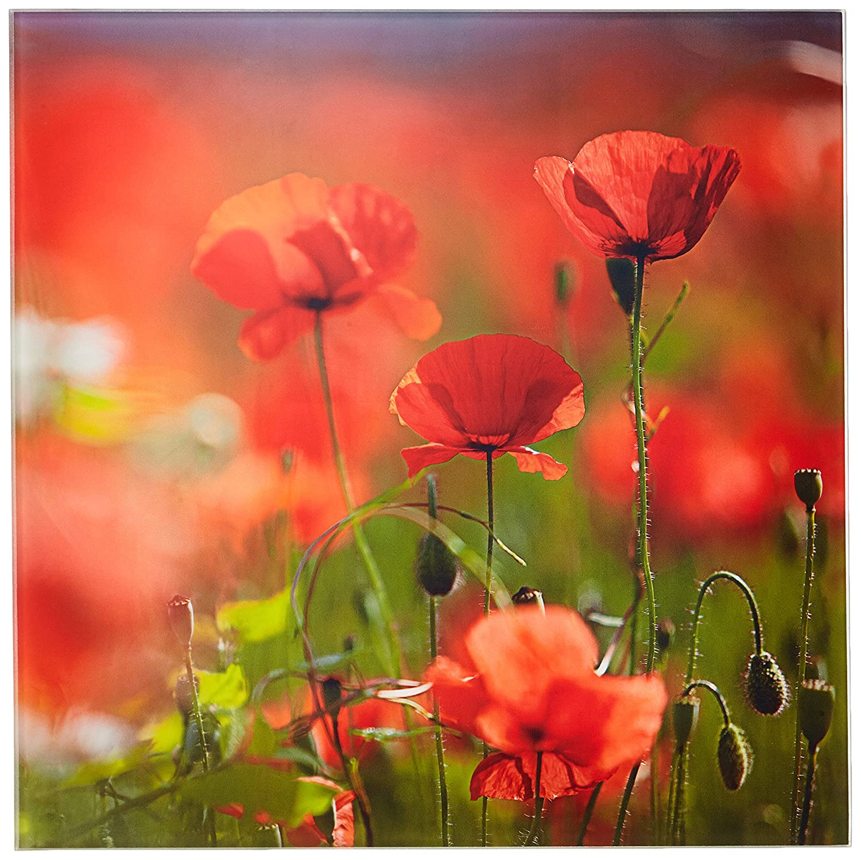 Pro-Art-Bilderpalette gla1268d Orange Poppies II Glas-Art, bunt, 20 x 20 x 1,3 cm Pro-Art-Bilderpalette (PRPQU)