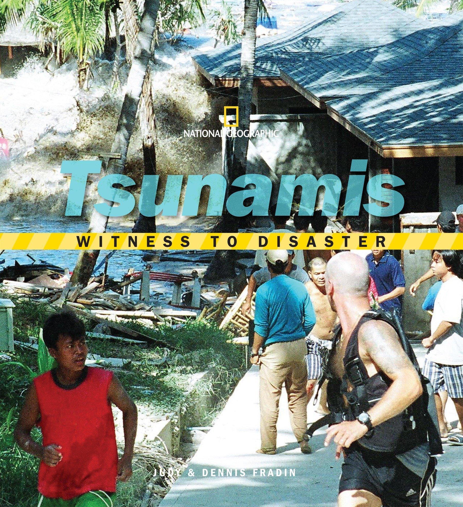 Download Witness to Disaster: Tsunamis pdf