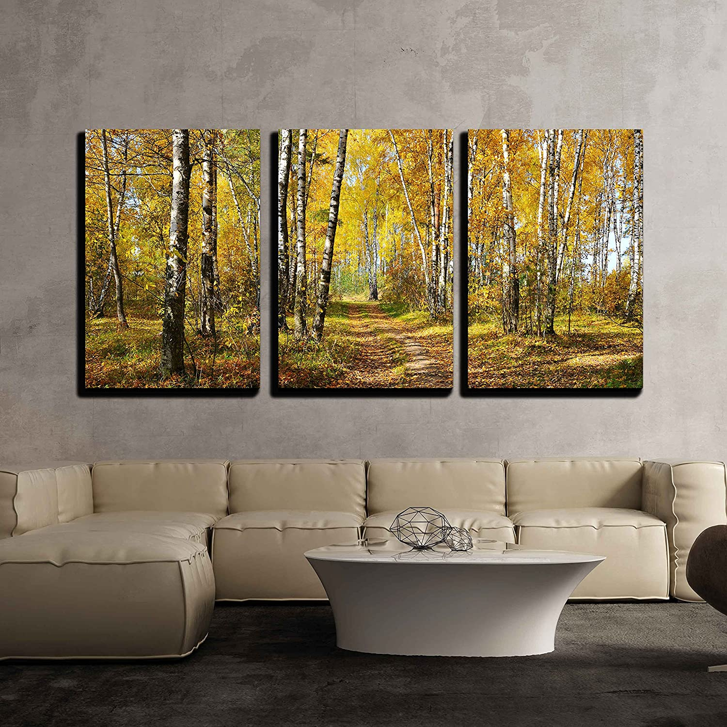 Amazon Com Wall26 3 Piece Canvas Wall Art Birch Grove In Autumn Forest Modern Home Art Stretched And Framed Ready To Hang 16 X24 X3 Panels Posters Prints
