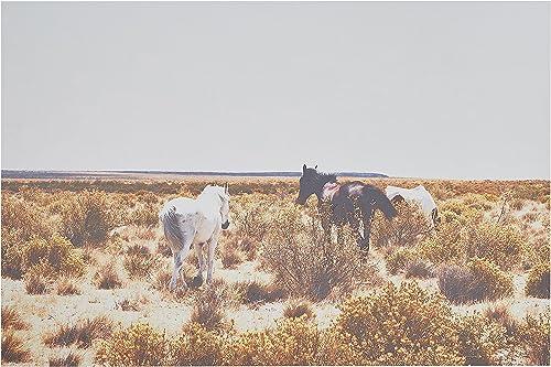 Amazon Brand Rivet Canvas Print Wall Art of Horses Grazing