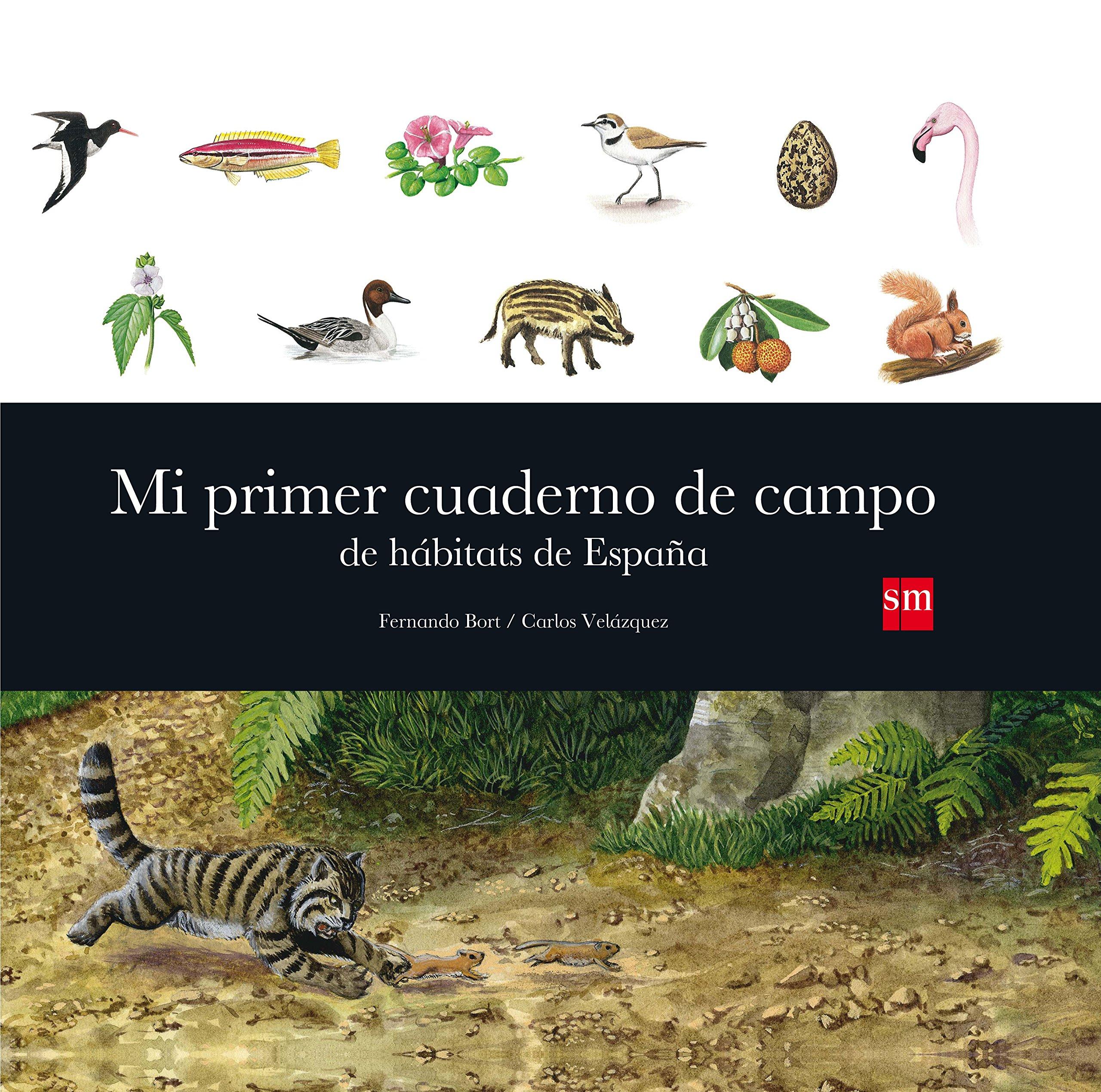 Más Cuaderno Primer Hábitats Aprender Mi España De Campo Para 7yb6Yfgv