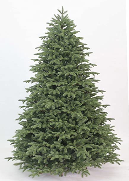 king of christmas 9 foot cypress spruce artificial christmas tree unlit - Cypress Christmas Tree