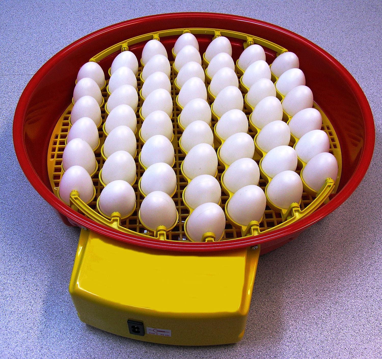 Geflügelbrüter für 51 Hühner-Eier,Brutkasten-Brutapparat-Brutmaschine-Brutschrank-Brutautomat-Brutgerät-Geflügelbrüter-Flächenbrüter-Inkubator-Incubator-Motorbrüter-Incubateur-Incubatrice-Broedmachine-Incubadora-Brüter-Couveuse-Schiuse-Hatcher-Necedoras-Eclosoirs-Kuluçka makinesi