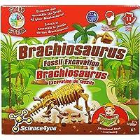 Science4you Brachiosaurus Fossil Excavation