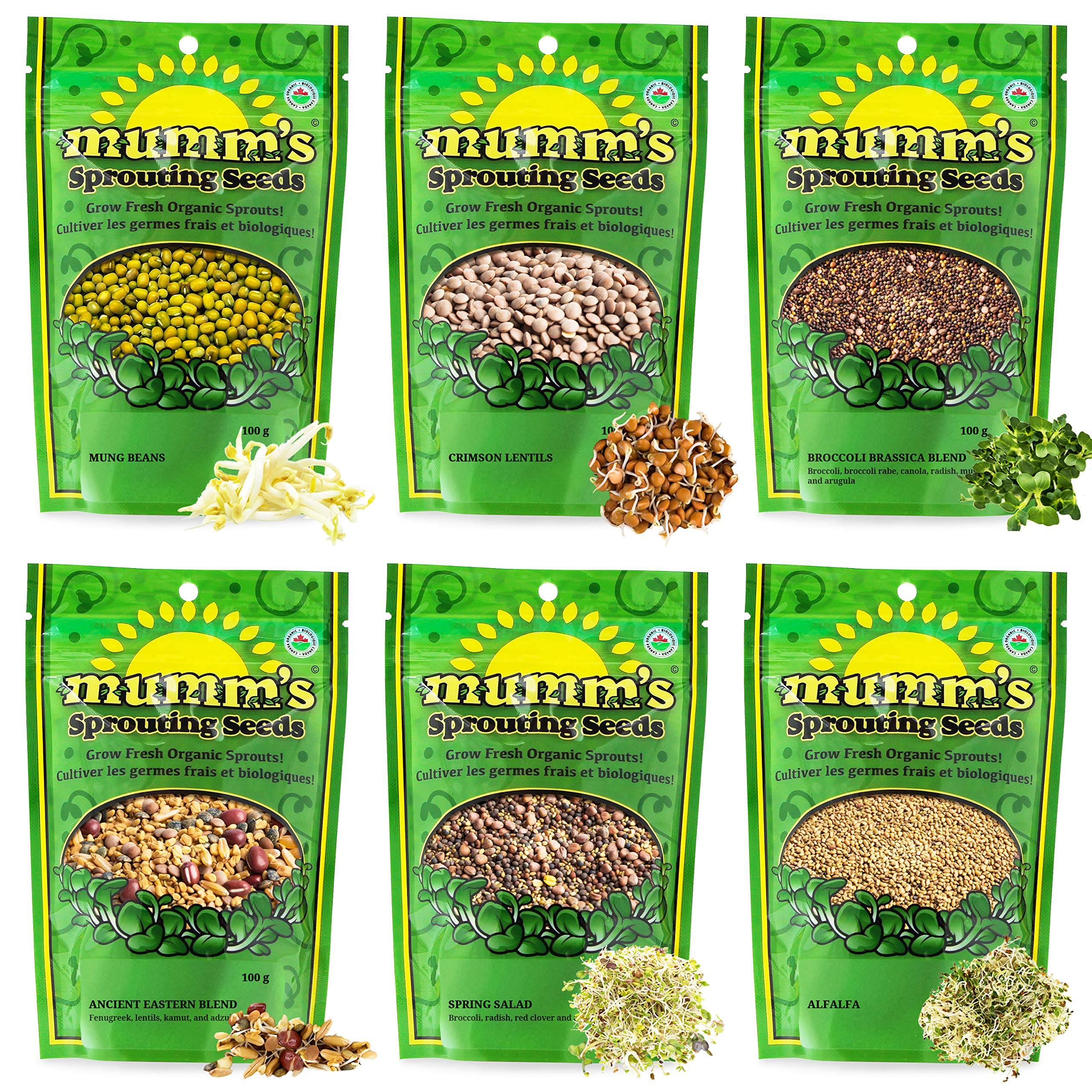 Mumm's Sprouting Seeds - Starter Sample Pack - 625 GR - Organic Sprout Seed Kit - Broccoli, Radish, Alfalfa, Mung Bean by Masontops