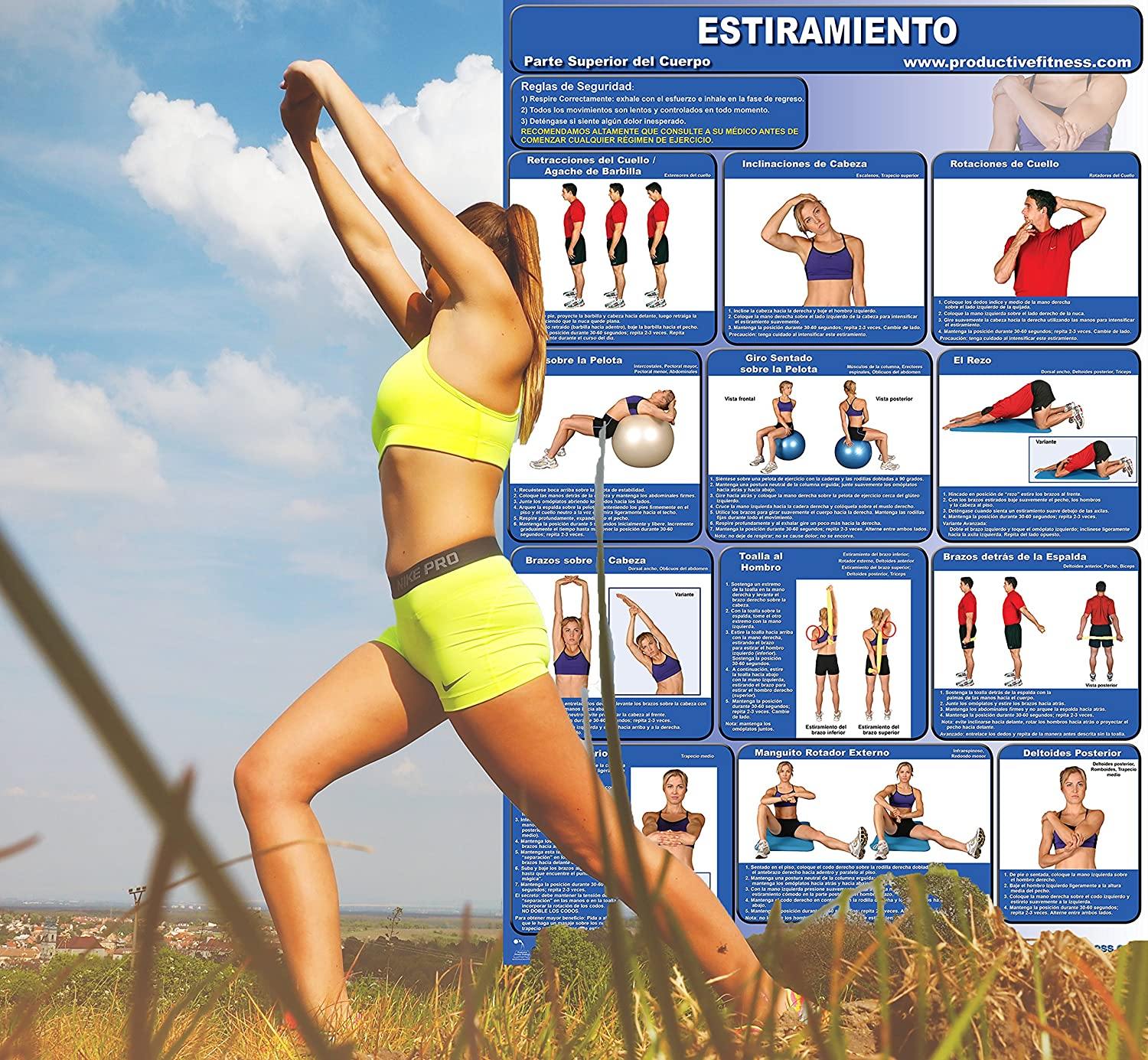 Amazon.com : Étirements Musculaires - Stretching Poster/Chart Set (Spanish Edition) ... : Sports & Outdoors